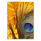 Peacock feather on sunflower card