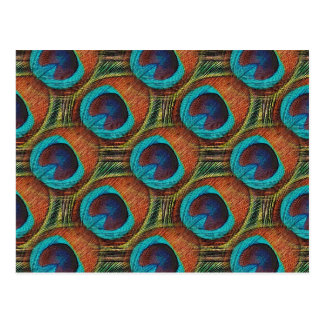 Peacock Feather Pattern Postcard