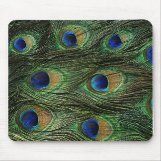 Peacock Feather Print Mouse Mat