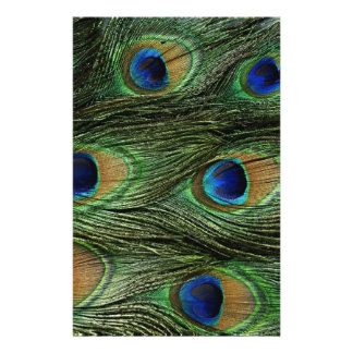 Peacock Feather Print Stationery