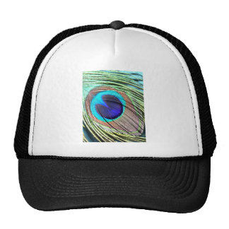 Peacock Feather Product Mesh Hat