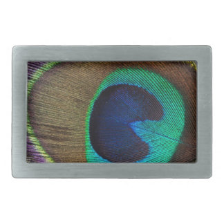 peacock feather rectangular belt buckles