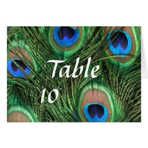 Peacock Feather Table Numbers Greeting Card