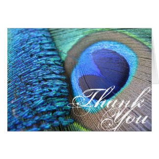 Peacock Feather Thank You Card