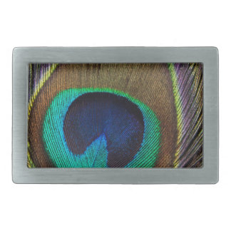 Peacock Feather Upright Close-Up Belt Buckles