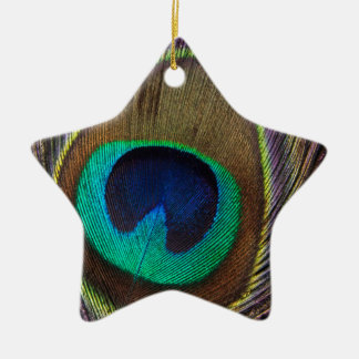 Peacock Feather Upright Close-Up Christmas Ornament