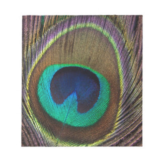 Peacock Feather Upright Close-Up Notepad