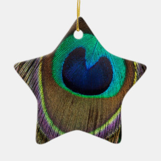 Peacock Feather Upside Down Close-Up Christmas Ornament
