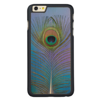Peacock Feather Vertical Carved Maple iPhone 6 Plus Case