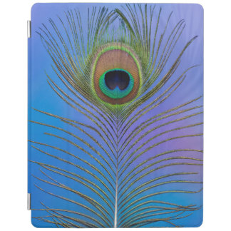Peacock Feather Vertical iPad Cover
