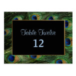 Peacock Feather Wedding Table Seating Number