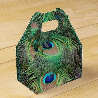 Peacock Feathers 3 Favour Box