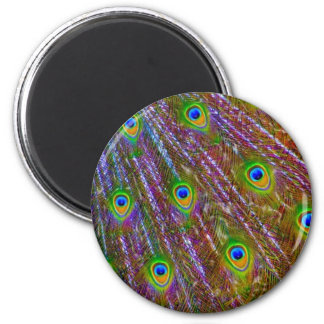 Peacock Feathers 6 Cm Round Magnet