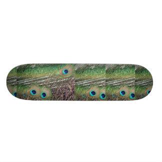Peacock feathers close up peafowl design 18.1 cm old school skateboard deck