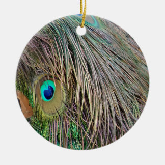 Peacock Feathers Dashing Colors Christmas Ornament