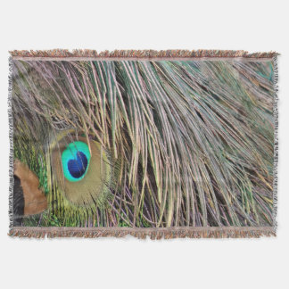 Peacock Feathers Dashing Colors Throw Blanket