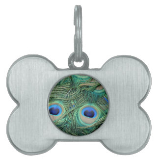 Peacock Feathers Deep Green Large Eyes Pet Name Tag