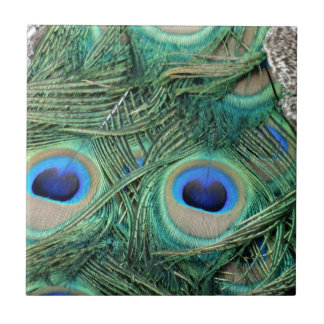 Peacock Feathers Deep Green Large Eyes Tile