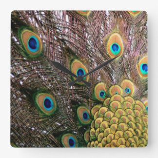 Peacock Feathers Emerald Green and Gold Square Wall Clock