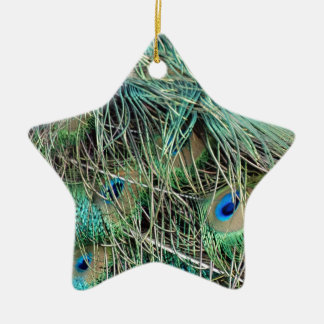 Peacock Feathers Exotic Growth New Eyes Christmas Ornament