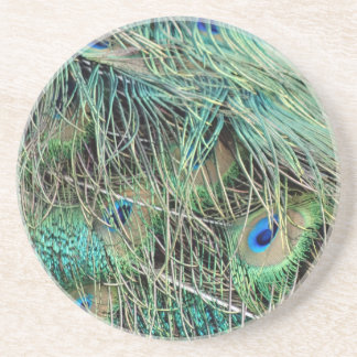Peacock Feathers Exotic Growth New Eyes Coaster