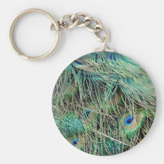 Peacock Feathers Exotic Growth New Eyes Key Ring