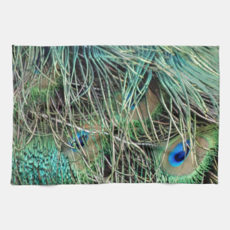 Peacock Feathers Exotic Growth New Eyes Tea Towel
