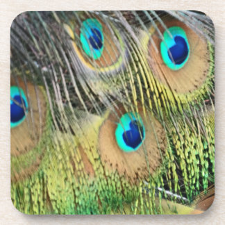 Peacock Feathers Eyes All New Growth Coaster