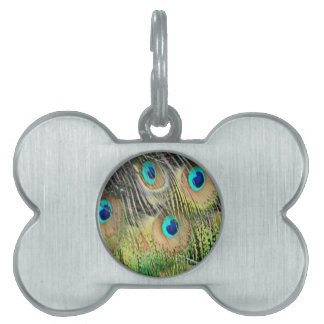 Peacock Feathers Eyes All New Growth Pet Tag