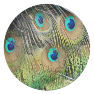 Peacock Feathers Eyes All New Growth Plate