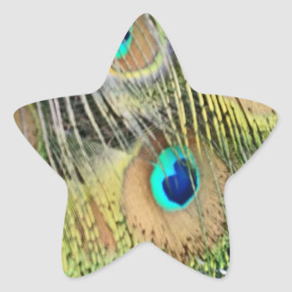 Peacock Feathers Eyes All New Growth Star Sticker