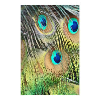 Peacock Feathers Eyes All New Growth Stationery