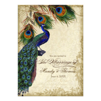 Peacock Feathers Formal Wedding Tea Stained Personalized Invites