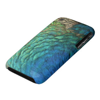 Peacock Feathers I Colorful Abstract Nature Design iPhone 3 Covers