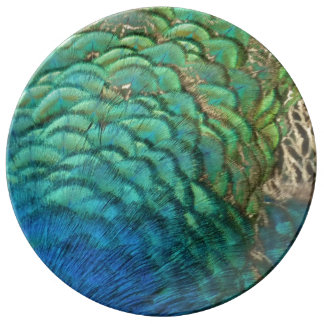 Peacock Feathers I Colorful Abstract Nature Design Porcelain Plate