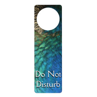 Peacock Feathers I Colorful Nature Design Door Knob Hanger