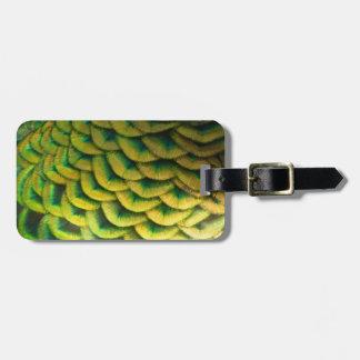 Peacock Feathers II Colorful Nature Design Luggage Tag