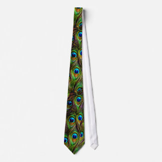 Peacock Feathers Invasion Tie