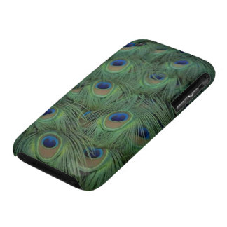 Peacock Feathers iPhone 3 Covers