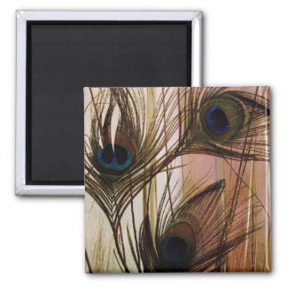 Peacock Feathers Magnet