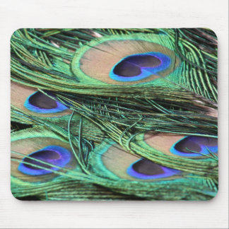 Peacock Feathers Mouse Mat