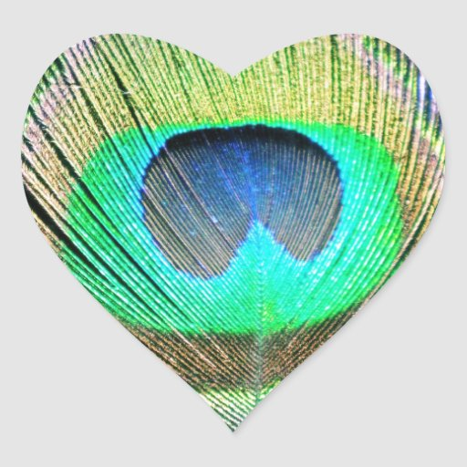 Peacock Feathers on turquoise Heart Stickers