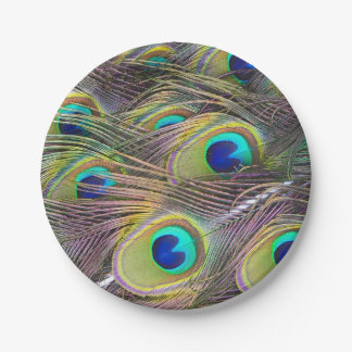 Peacock Feathers Paper Plate