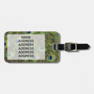 Peacock Feathers Pattern Luggage Tag