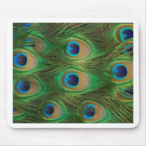 Peacock Feathers - Peafowl Mouse Pad