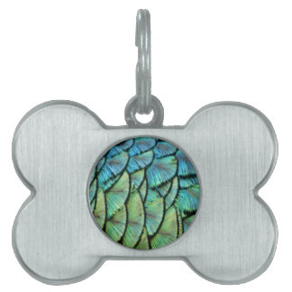 Peacock Feathers Pet ID Tag