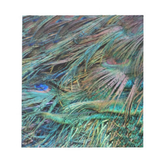 Peacock Feathers Rainbow Colors Notepad