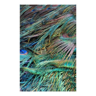 Peacock Feathers Rainbow Colors Stationery