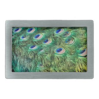Peacock Feathers Rectangular Belt Buckles