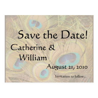 Peacock Feathers Save the Date Postcard
